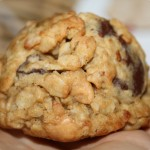 coyote oaties :: gourmet oatmeal cookies