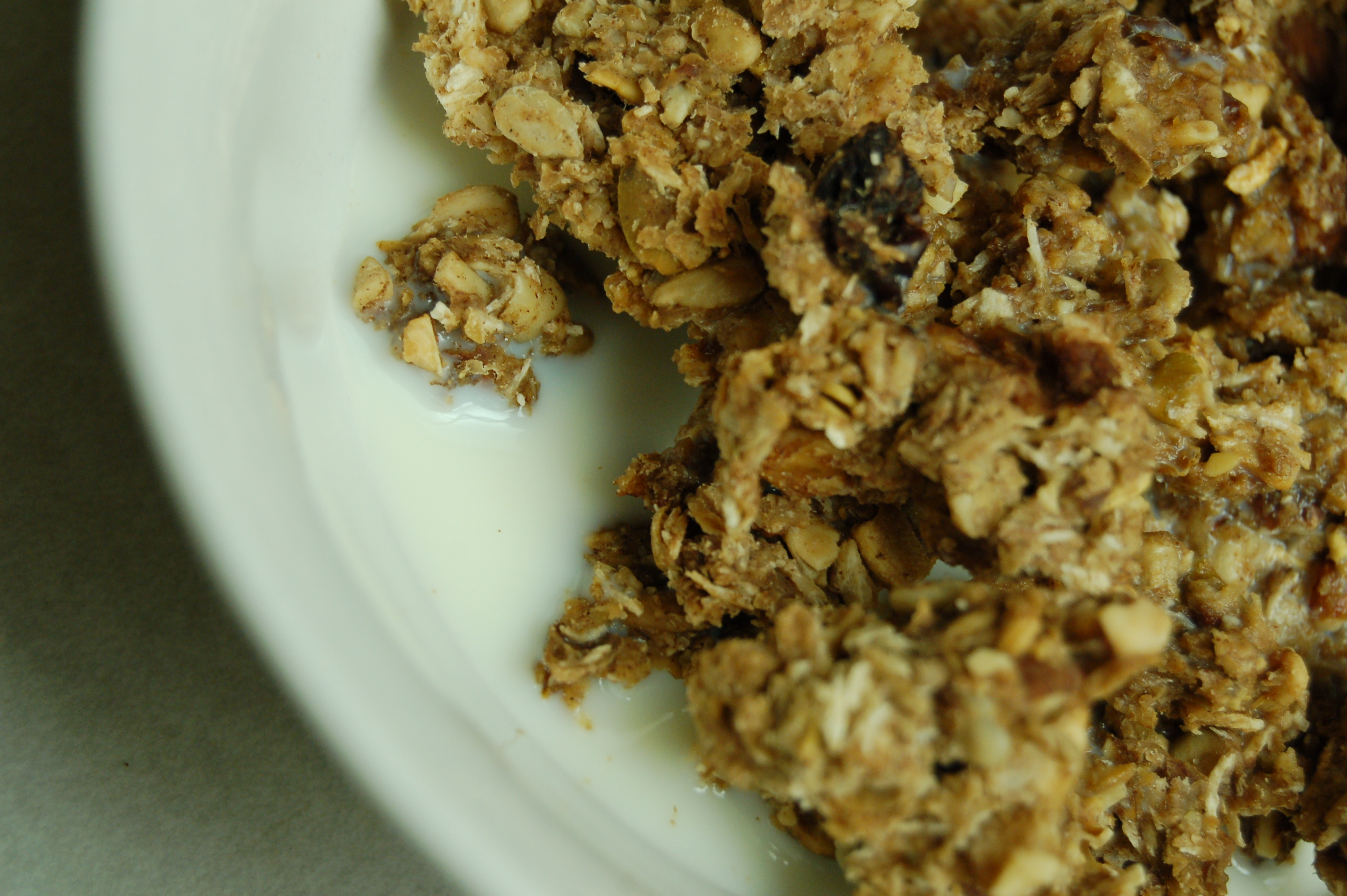 a simple {real food} recipe :: pumpkin apple granola (dairy, gluten, and egg free with nut free option}