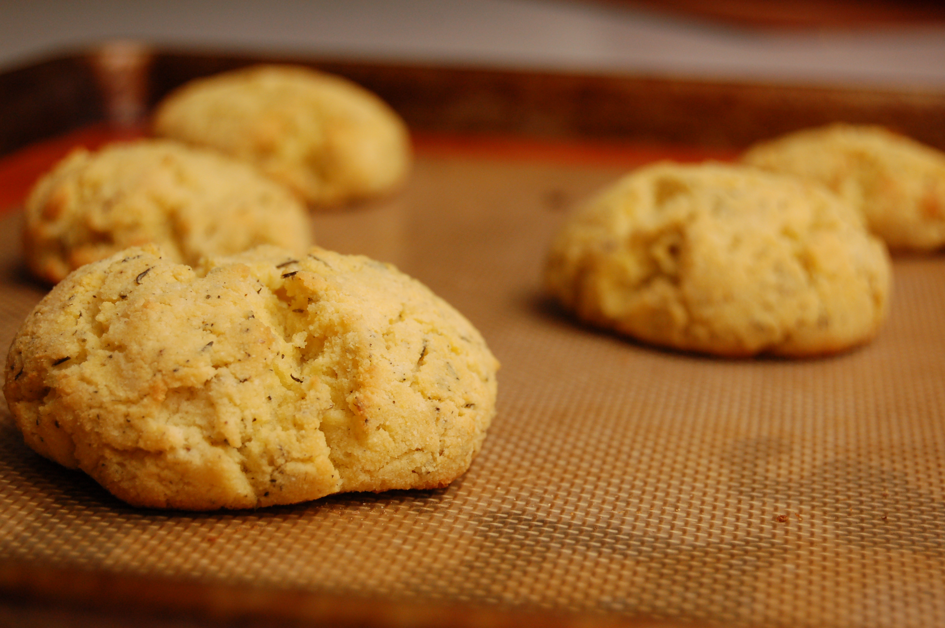 a simple real food recipe :: herbed biscuits :: grain free :: allergen free options