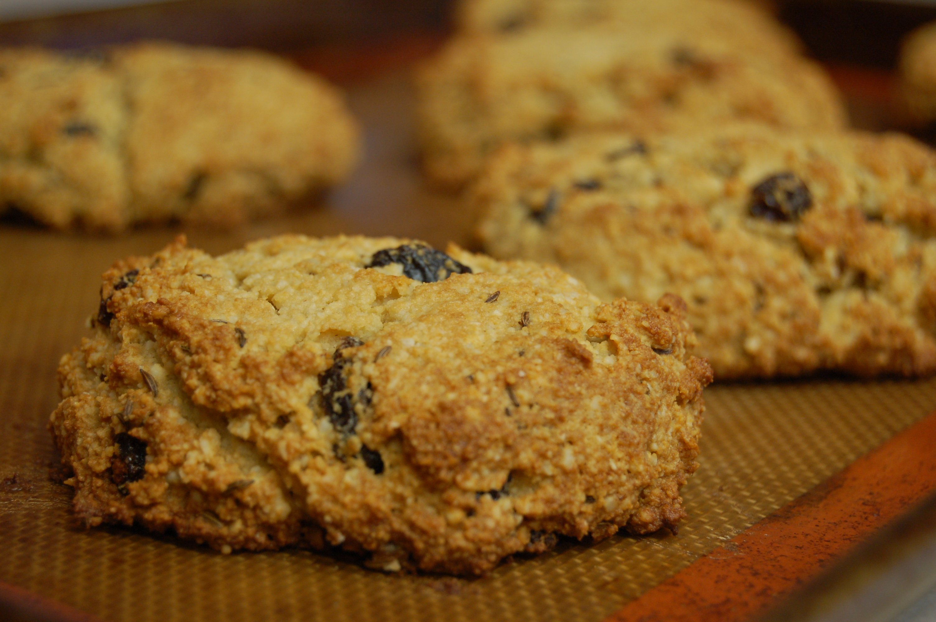 a simple real food recipe :: grain free irish soda bread biscuits :: allergen free options