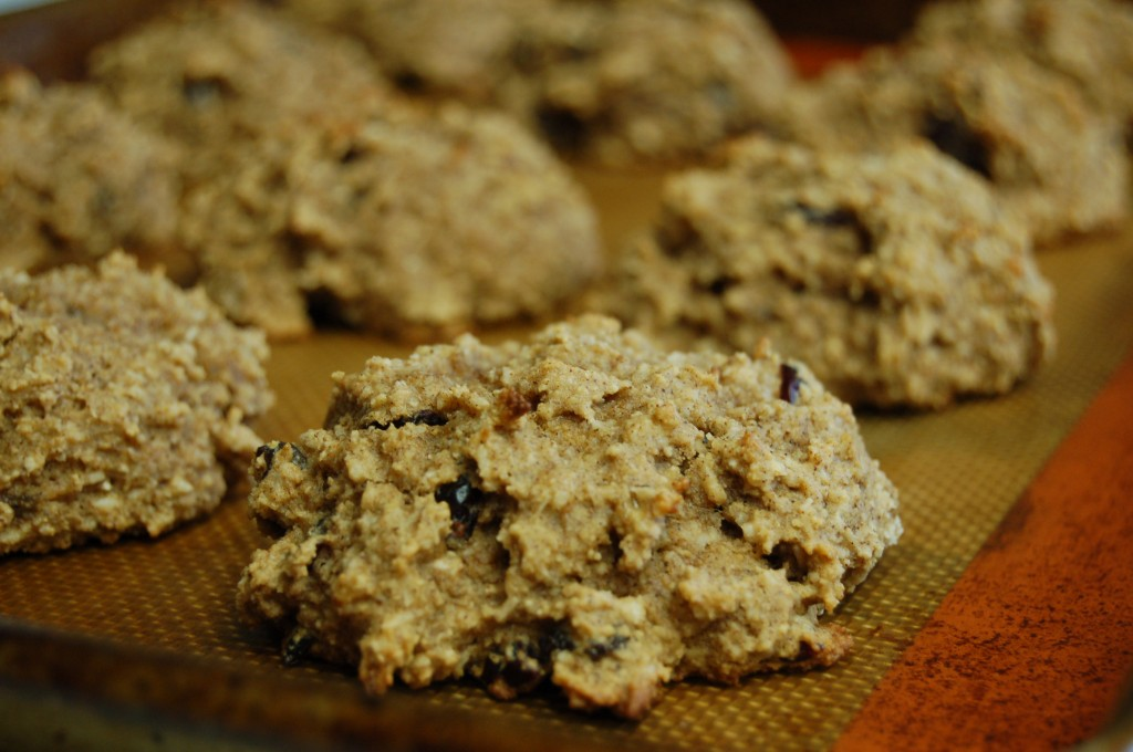 a simple real food recipe :: super fast breakfast cookies :: allergen free options