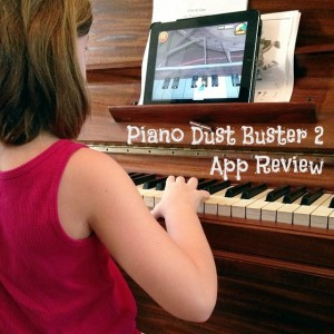 piano dust buster2