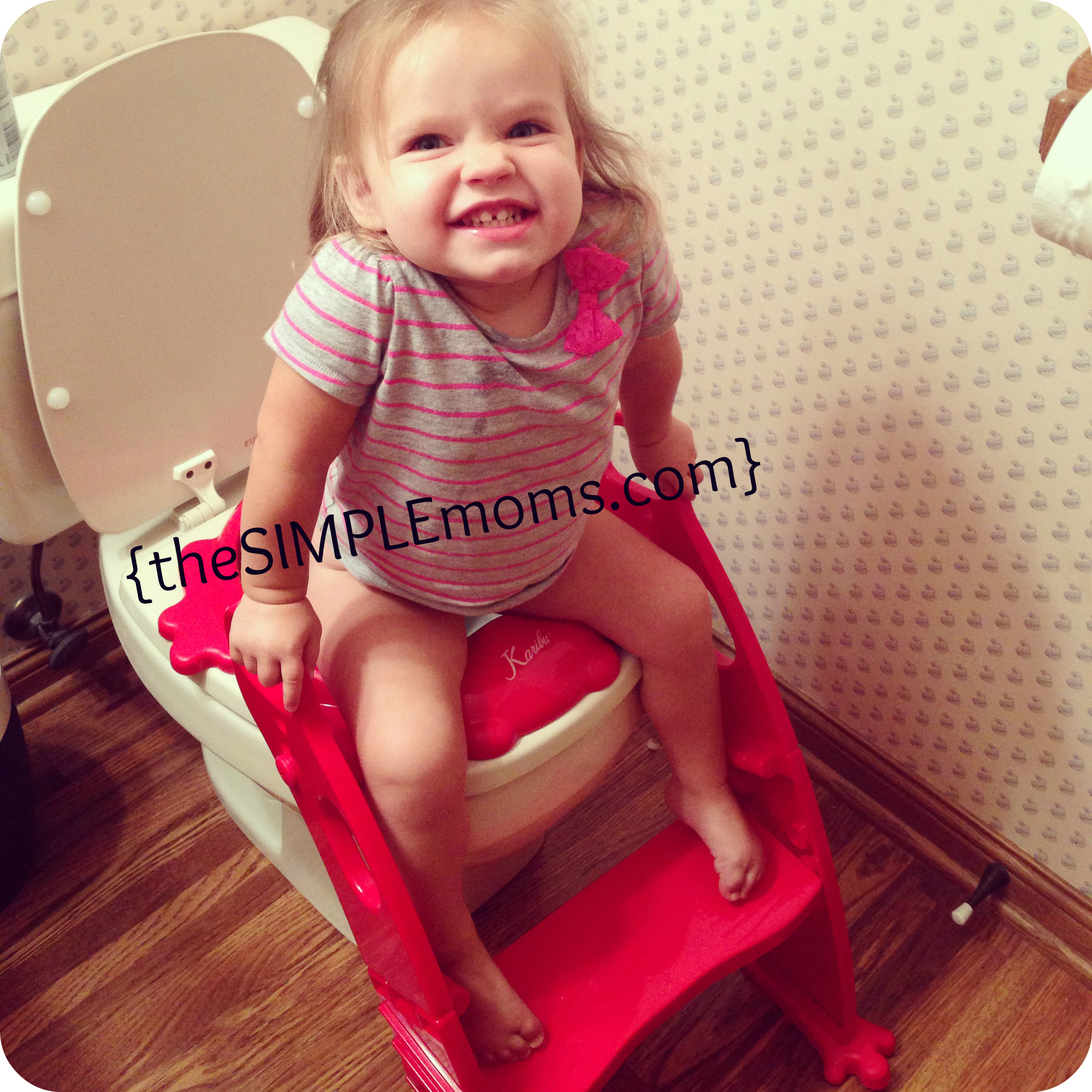 karibu potty chair