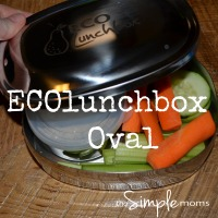 ECOlunchbox featured image small