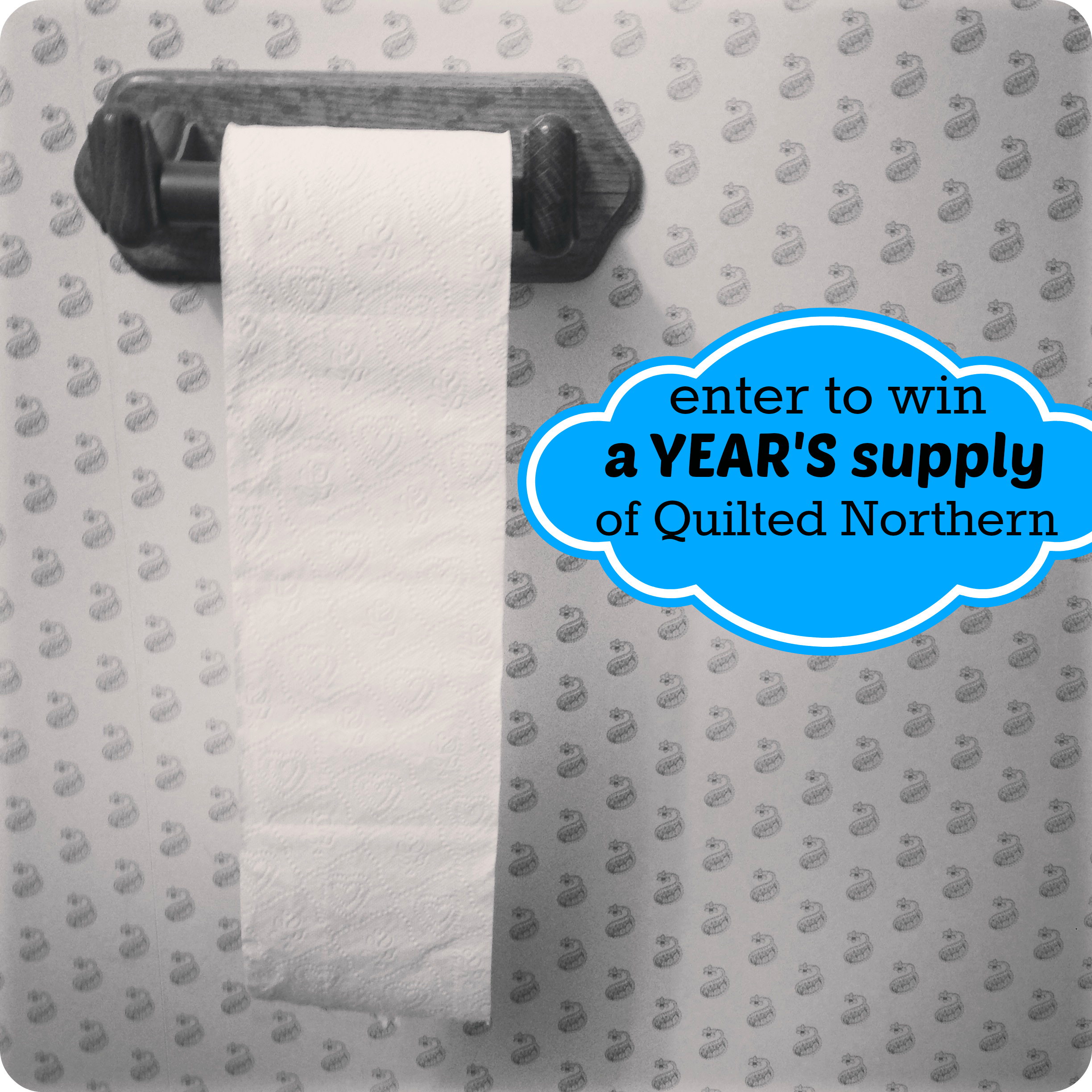 quilted northern giveaway image