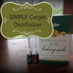 carpetdeodordiy_small