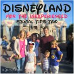 Disneyland and California Adventure for the inexperienced :: frugal tips too