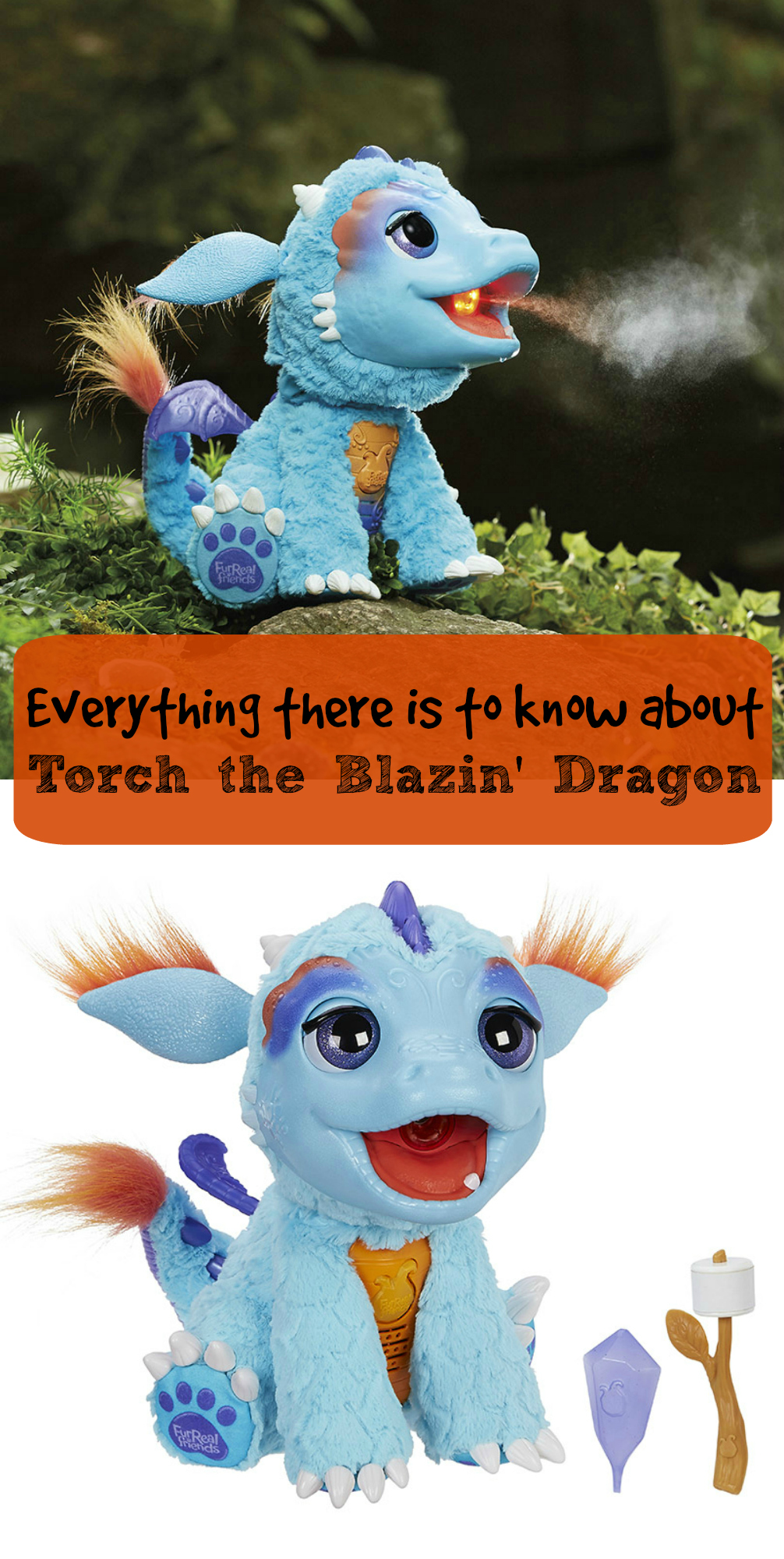 everything-there-is-to-know-about-torch-the-blazin-dragon-2