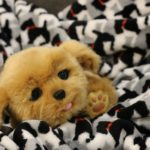 how to get your child a cuddly puppy this holiday season, really/not really {#aSIMPLEchristmas}